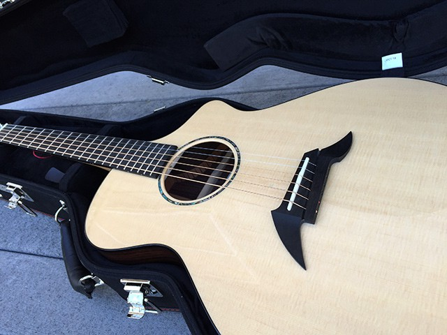 Custom Breedlove Acoustic Guitar