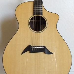Breedlove Acoustic