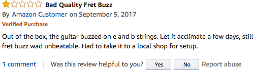A negative guitar review on Amazon.com